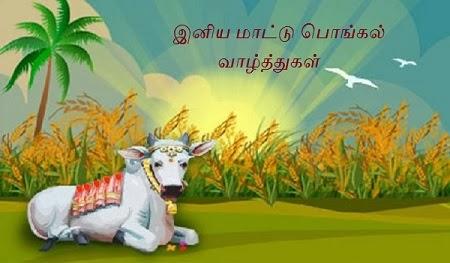 Maatu Pongal / Mattu Pongal Valthugal in Tamil