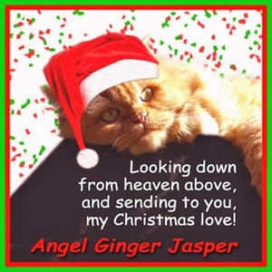 From Ginger Jasper