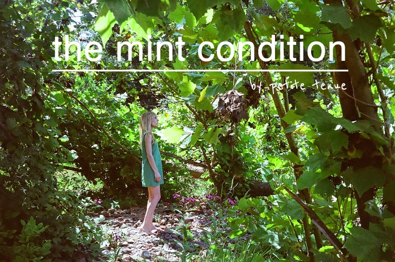 the mint condition, by petite tenue