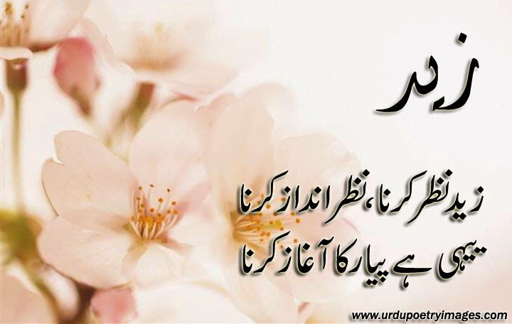 urdu piyar poetry