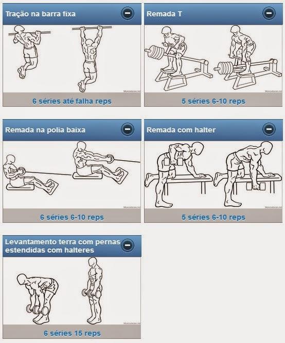 Super Personal Trainer Online: O PROGRAMA DE TREINO DE ARNOLD  WF07