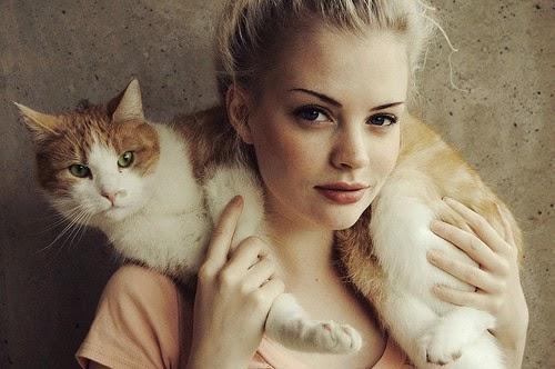 Tình yêu như thể một con mèo