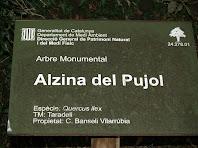 Placa identificativa de l'Alzina del Pujol
