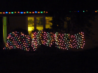 outside Christmas lights