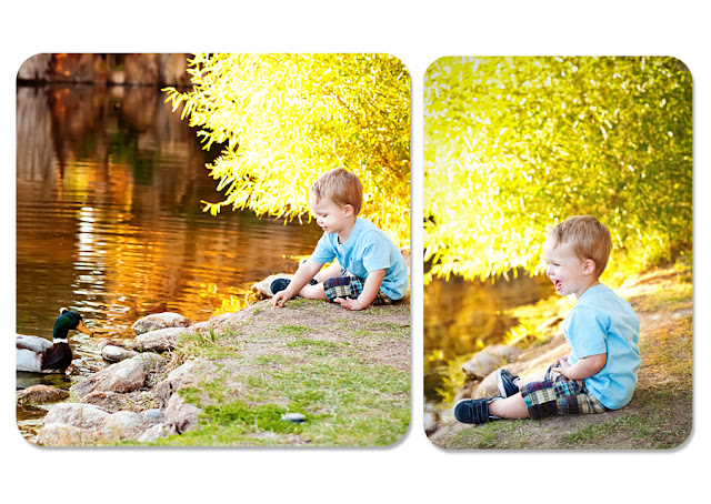 Series of photos of a little boy playing with ducks at a Tucson park