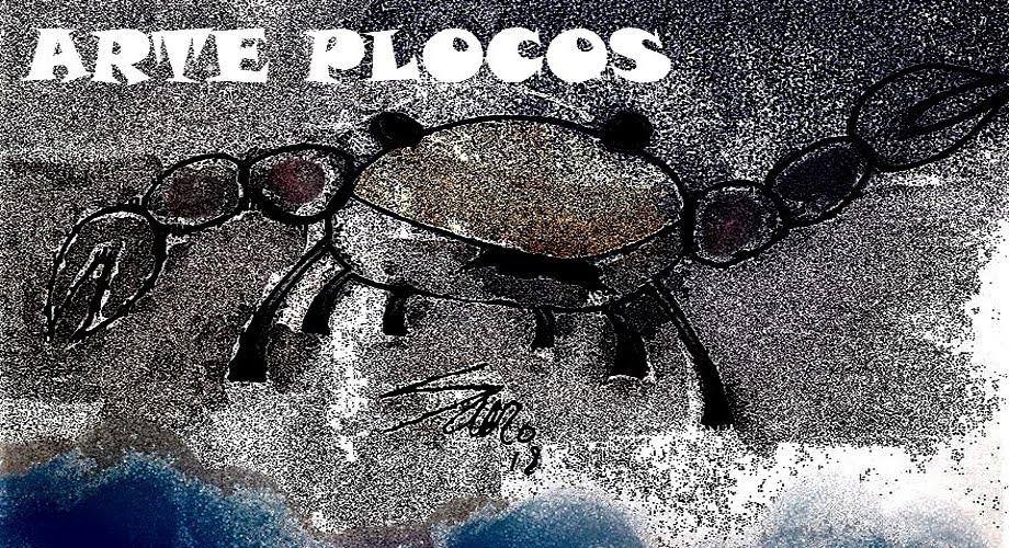 ARTE PLOCOS