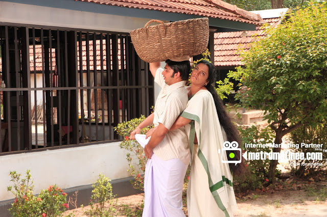 Rathinirvedam Remake Hot Stills