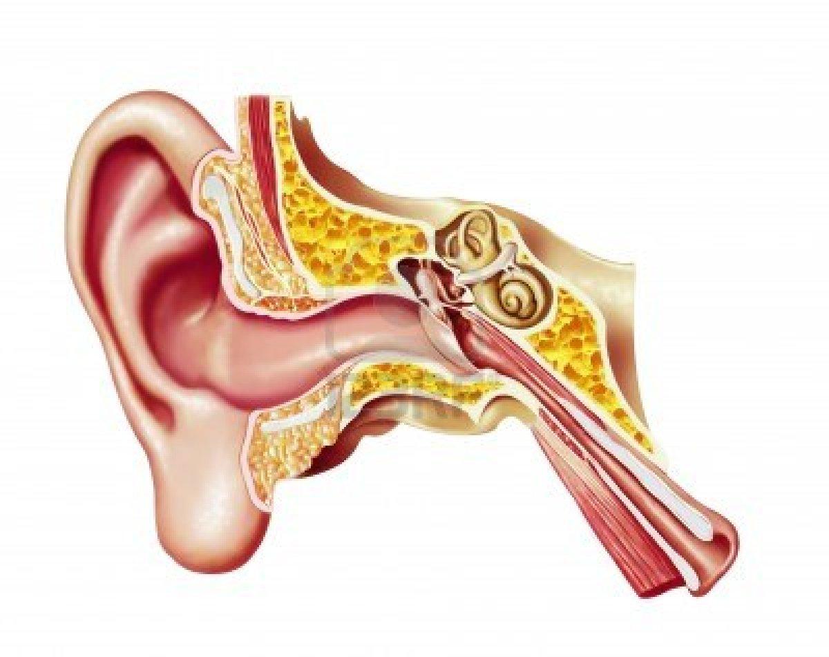 Prótesis auditiva y dispositivos de ayuda: SISTEMA CROS Y BICROS