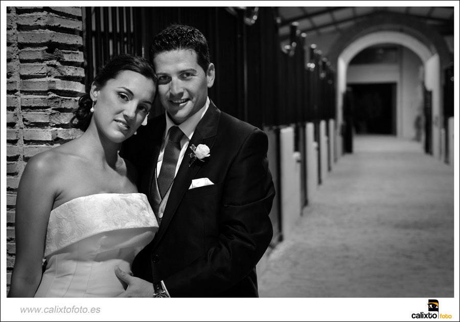 boda-ayuntamiento-de-alicante-yeguada-Lagloria-16-fotógrafo-Calixto-Foto