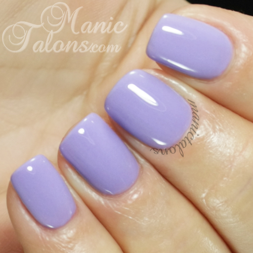 Daisy Duo Lavender Prophet Swatch