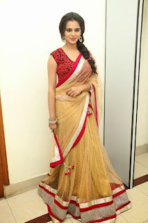 Actress Manasa Picture Gallery in Saree at Rowdy Fellow Movie Audio Launch  031