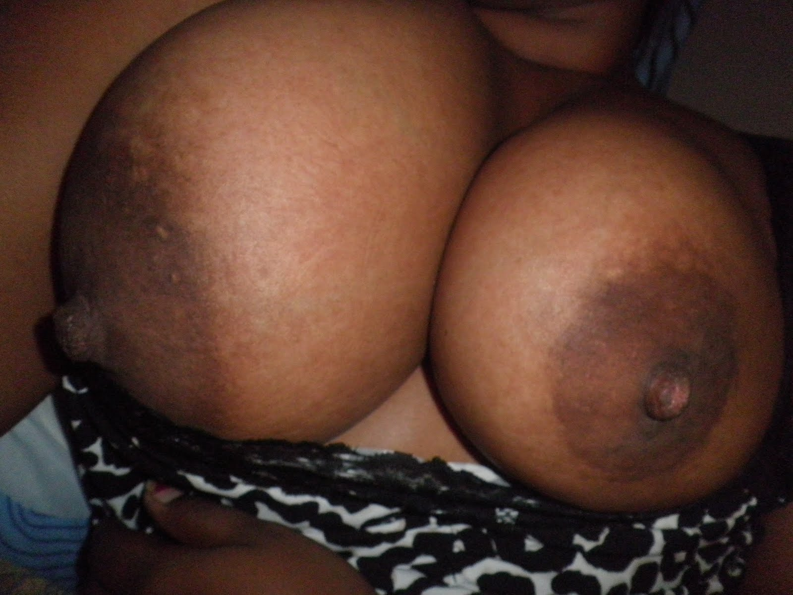 Aletta Ocean goes all Nude! gianna michaels nude