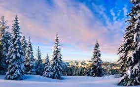 Зимняя природа.