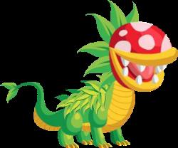 dragon carnivoro adulto