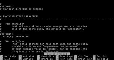 Proxy Debian Squeeze