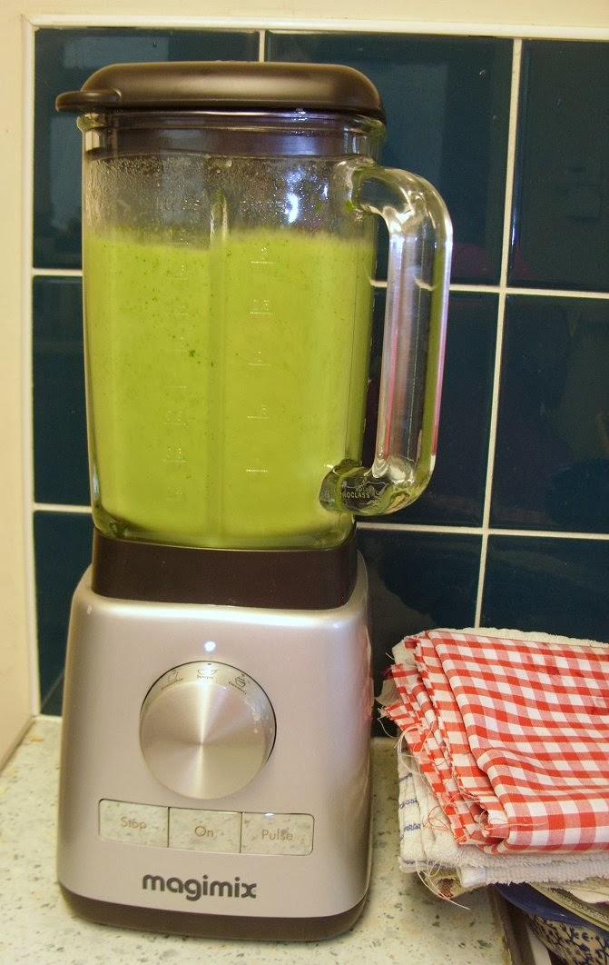 magimix juicer test