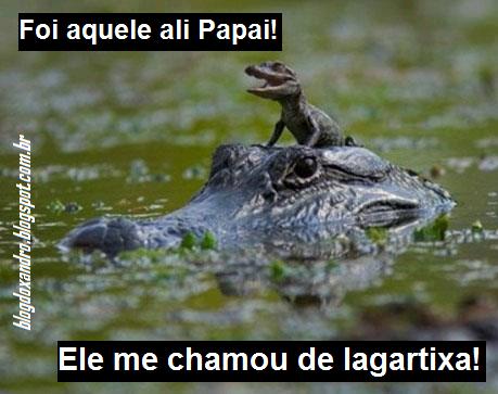 lagartixa.png (459×363)