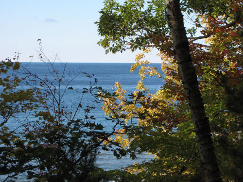 Lake Michigan through trees