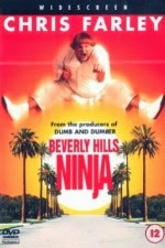 Watch Beverly Hills Ninja (1997) Megavideo Movie Online