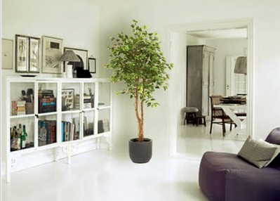 Home decorations how to decorate your home with - Plantas artificiales para decoracion ...