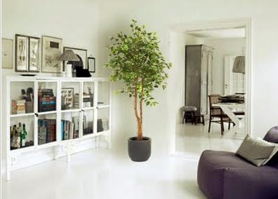 Ventajas plantas artificiales - Plantas de interior grandes ...