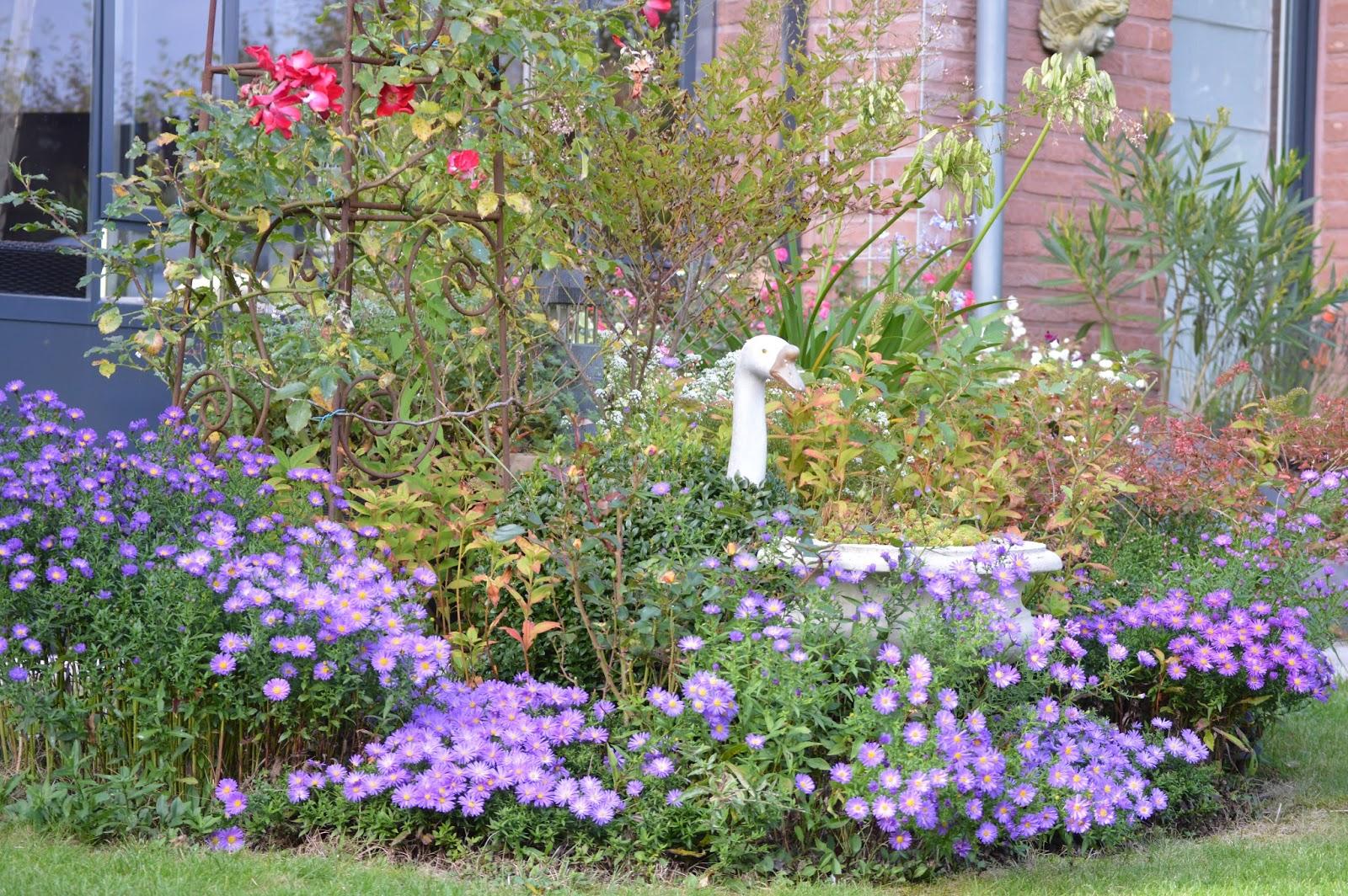 Passionn ment jardin octobre 2015 for Jardin octobre 2015