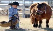 Tipe-Tipe Anak dalam Bersosialisasi/Bergaul