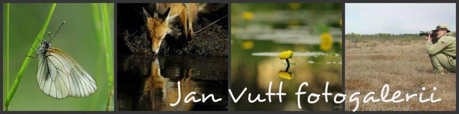 Jan Vutt fotogalerii