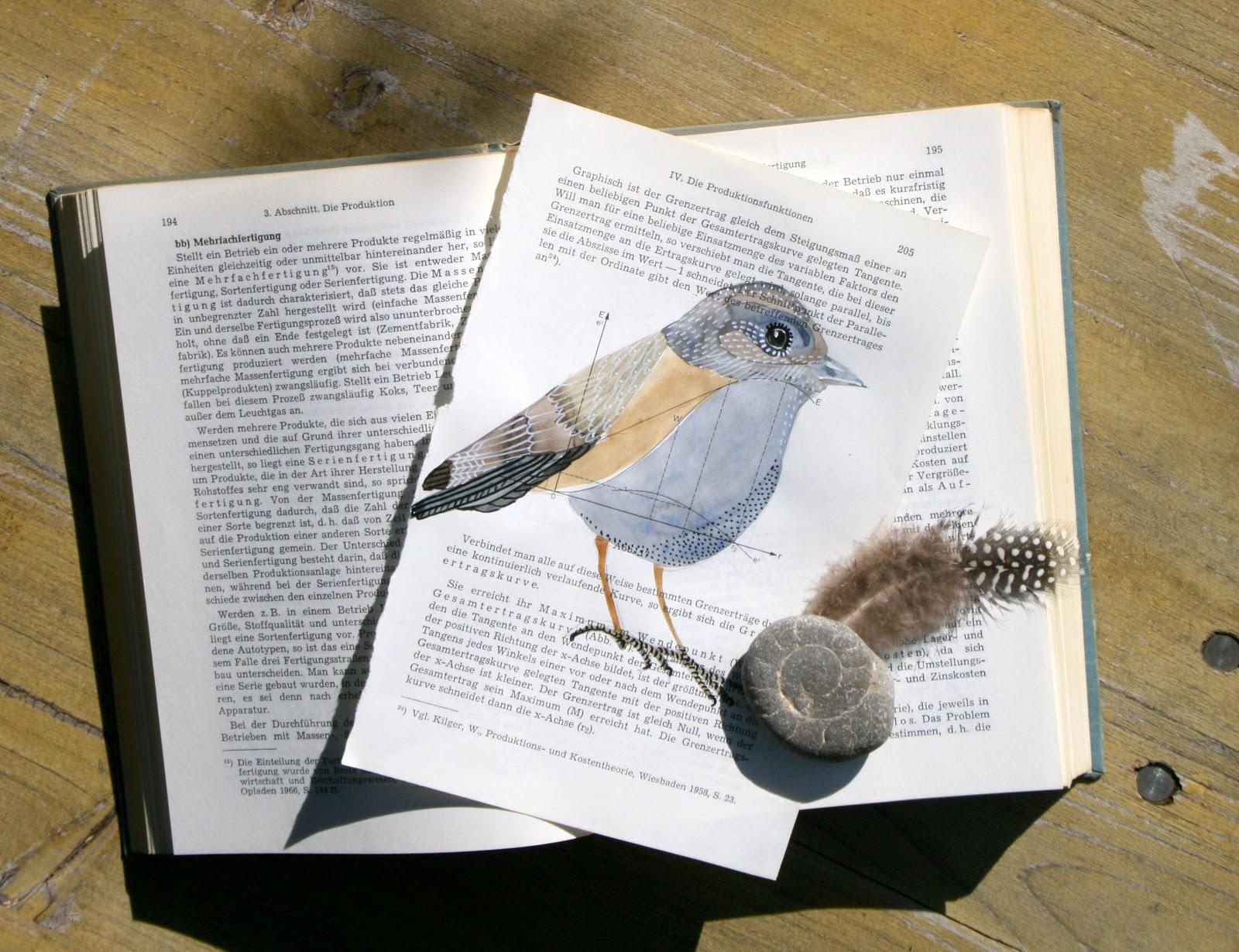 shore stein papier buch pdf