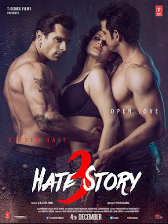 Poster Of Bollywood Movie Hate Story 3 2015 300MB HDRip 480P Full Hindi Movie