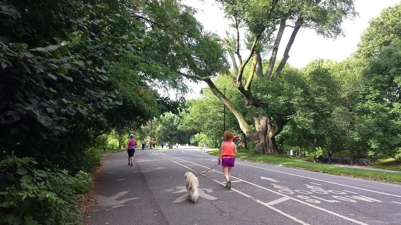 Running Path in Prospect Park