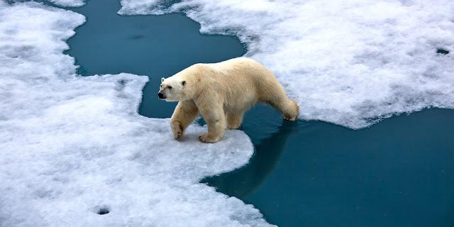 Ilmuwan Iklim Kumpul di Jakarta Bahas Perubahan Iklim