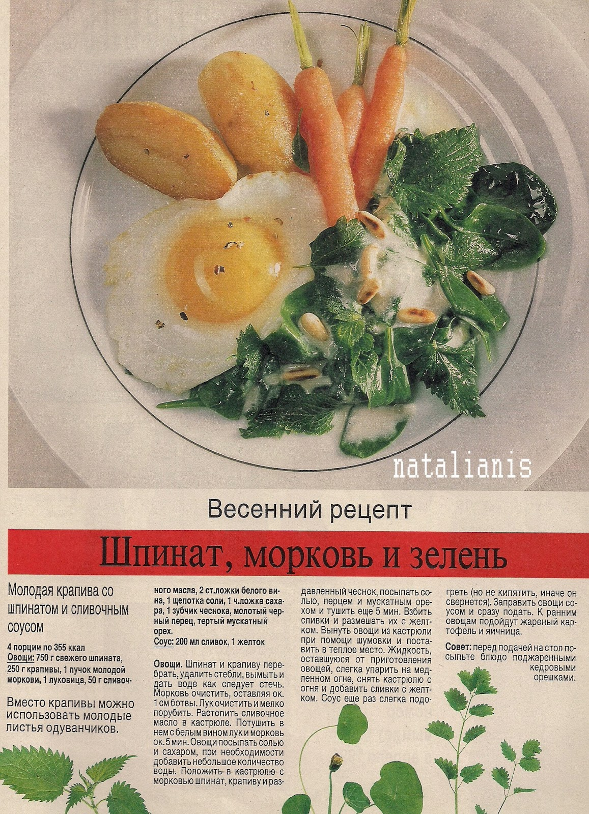 Рецепты блюд от бориса бурды