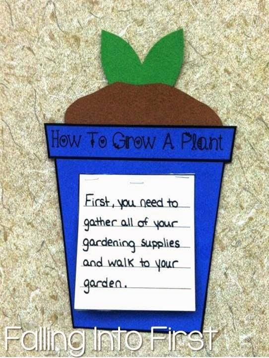 www.teacherspayteachers.com/Product/Plants-All-About-Plants-Unit-For-The-Common-Core-Classroom-616280