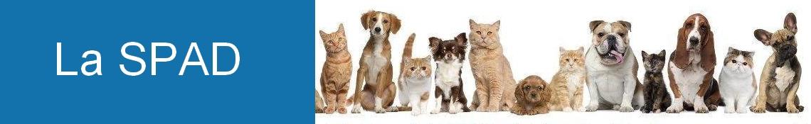 La Société de Protection Animale Dieppoise