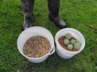 Garden Birds Fat Balls