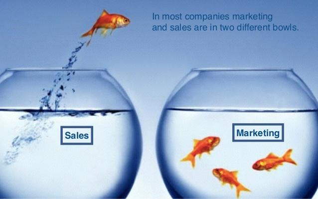 marketing communication salesmanship Marketing services professional websites  content management,  development  b2b marketing communication services salesmanship  assisting services.
