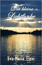 Roman: Der kleine Lichtfunke