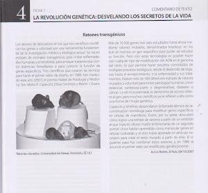 COMENTARIO TEXTO 4