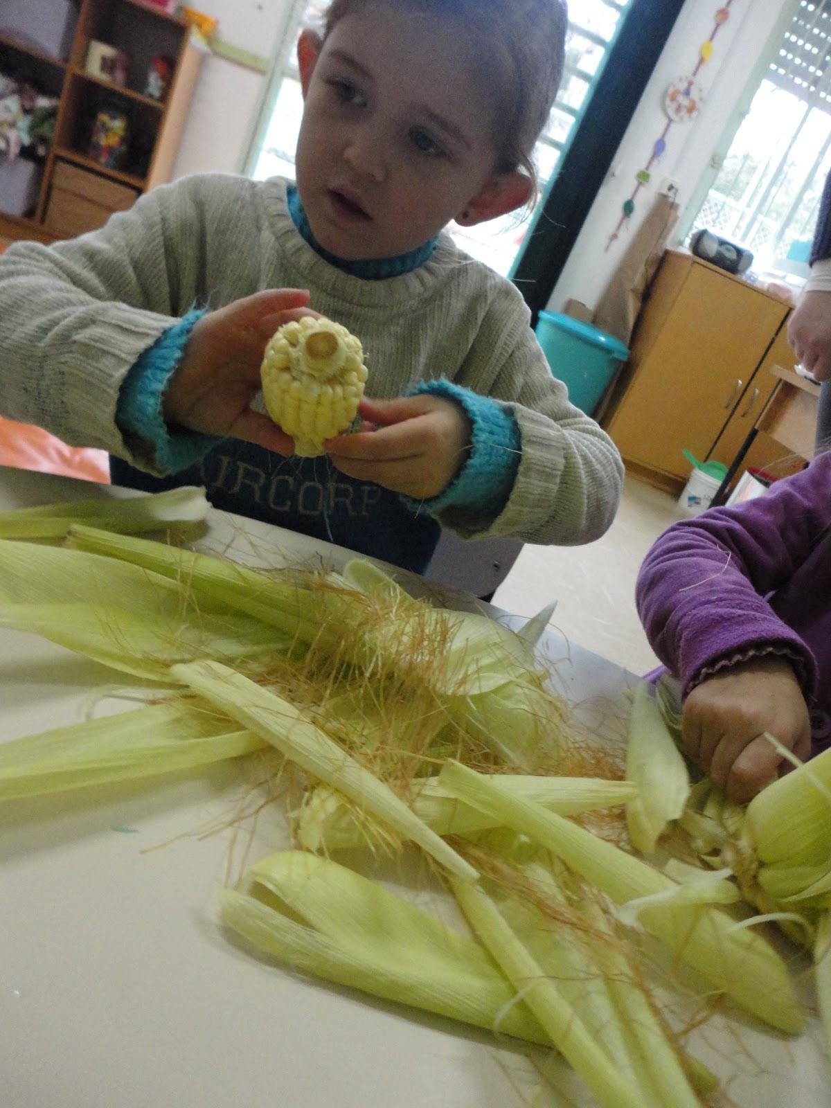atividades alfabetizacao jardim horta pomar:Nossas atividades referente ao Projeto Horta e Pomar continuam