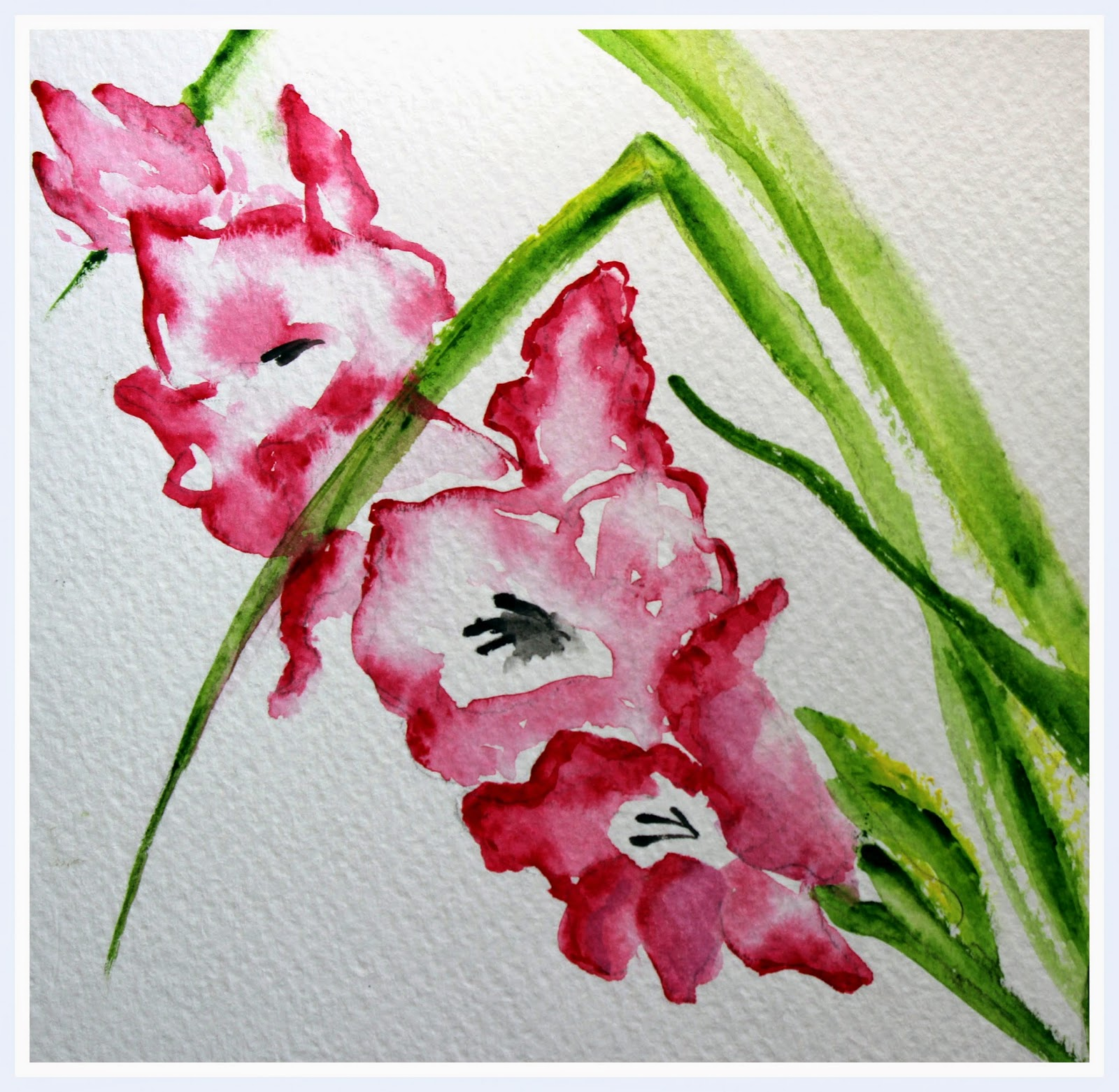 pink gladeolus flowers floral watercolors painting botanical
