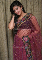 Pranitha, hot, navel, show, in, saree, sexy, photo, galley