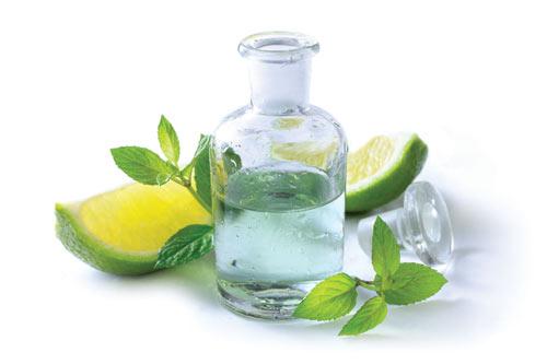 9 loại thảo dược làm đẹp da hiệu quả và an toàn