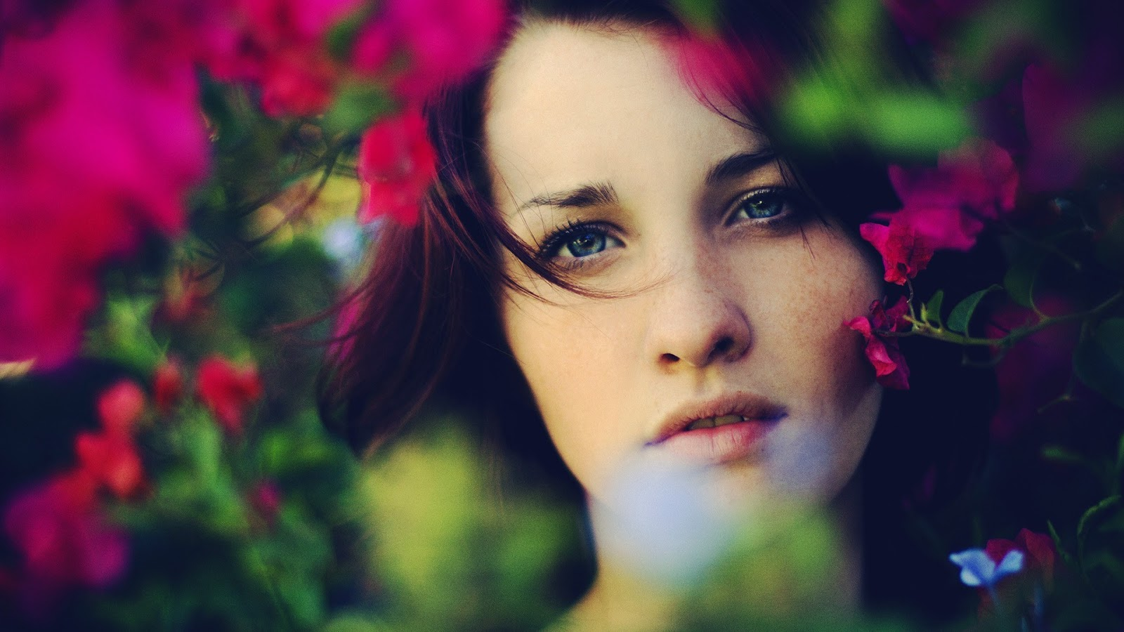 Beautiful Blue Eyed Girl Between Flowers HD Wallpaper | ReWallpaper