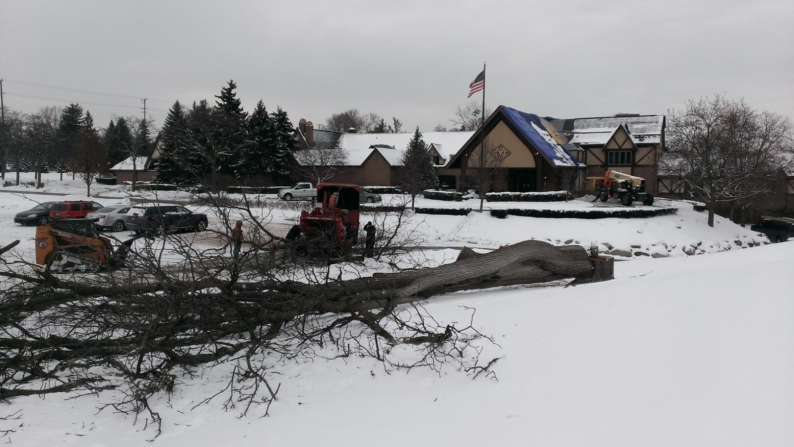 meadowbrook country club golf course maintenance tree care update