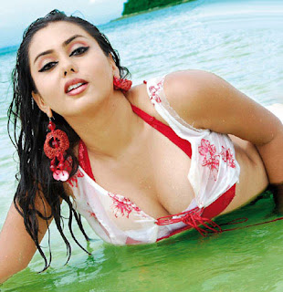 Hot Actress Namitha HQ Wallpapers picture photos
