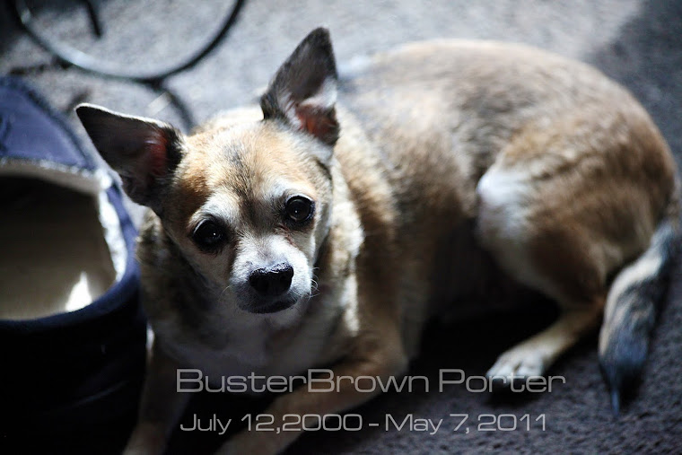 We lost our boy, our Busterbrown.