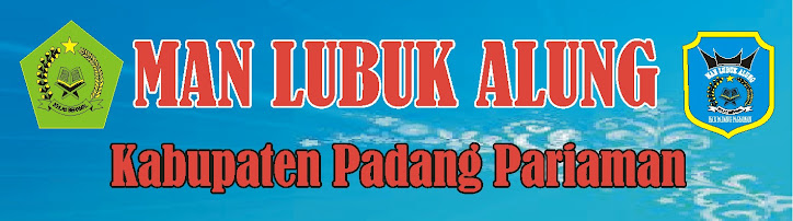 PROFIL MAN LUBUK ALUNG