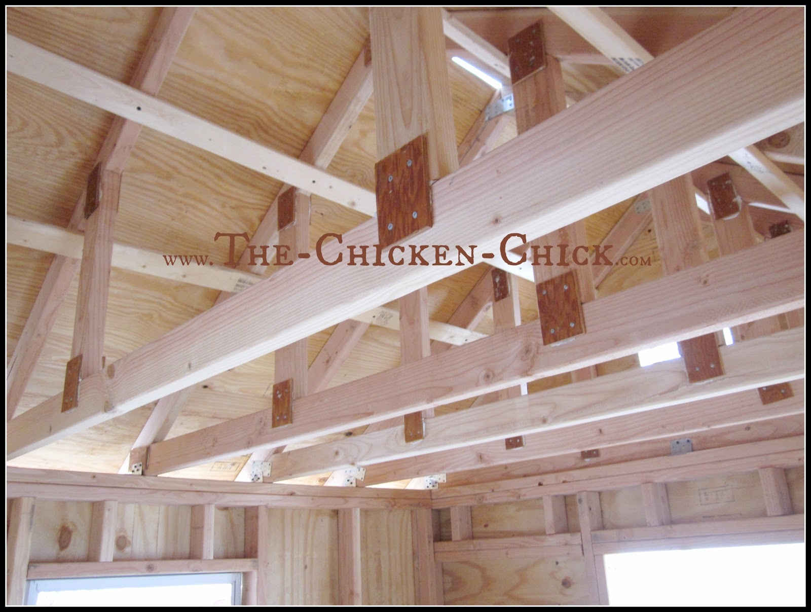 Placing windows on all four sides of the coop with open gables towards or air vents towards the top of the coop are best for maximizing air exchange, especially in cold weather.