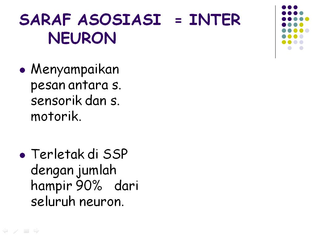 sistem pencernaan power point PPT SISTEM PENCERNAAN - Aldibio's Blog | Blognya Biologi Lover